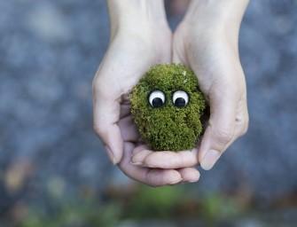 Akimirkos: saugoti aplinką ir save joje