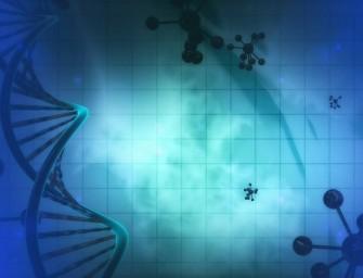 Apie genetiškai modifikuotus augalus