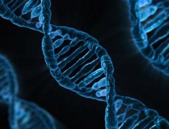 Gyvybė, atsiradusi iš cheminių junginių: faktas ar fantazija?