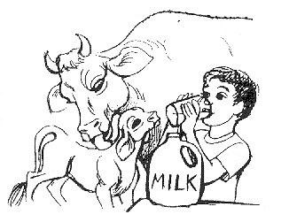 Karvių globa – kas tai?