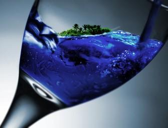 Laikas alkoholio vartojimo problemą spręsti iš esmės: reikia visuomenės palaikymo