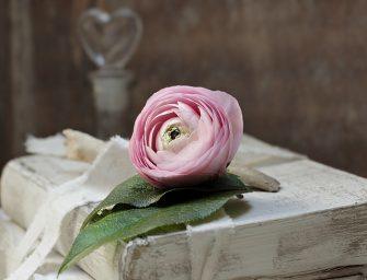 Išminties perlai. Meilė ir geismas