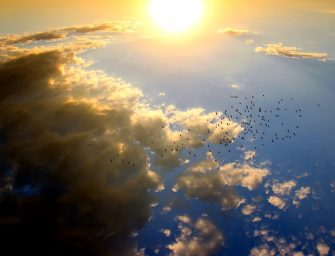 Istorija apie Dėkingumą. Arba: kas vyksta danguje, kai mes meldžiamės
